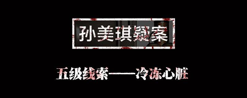 孙美琪疑案金凤凰线索冷冻心脏位置介绍